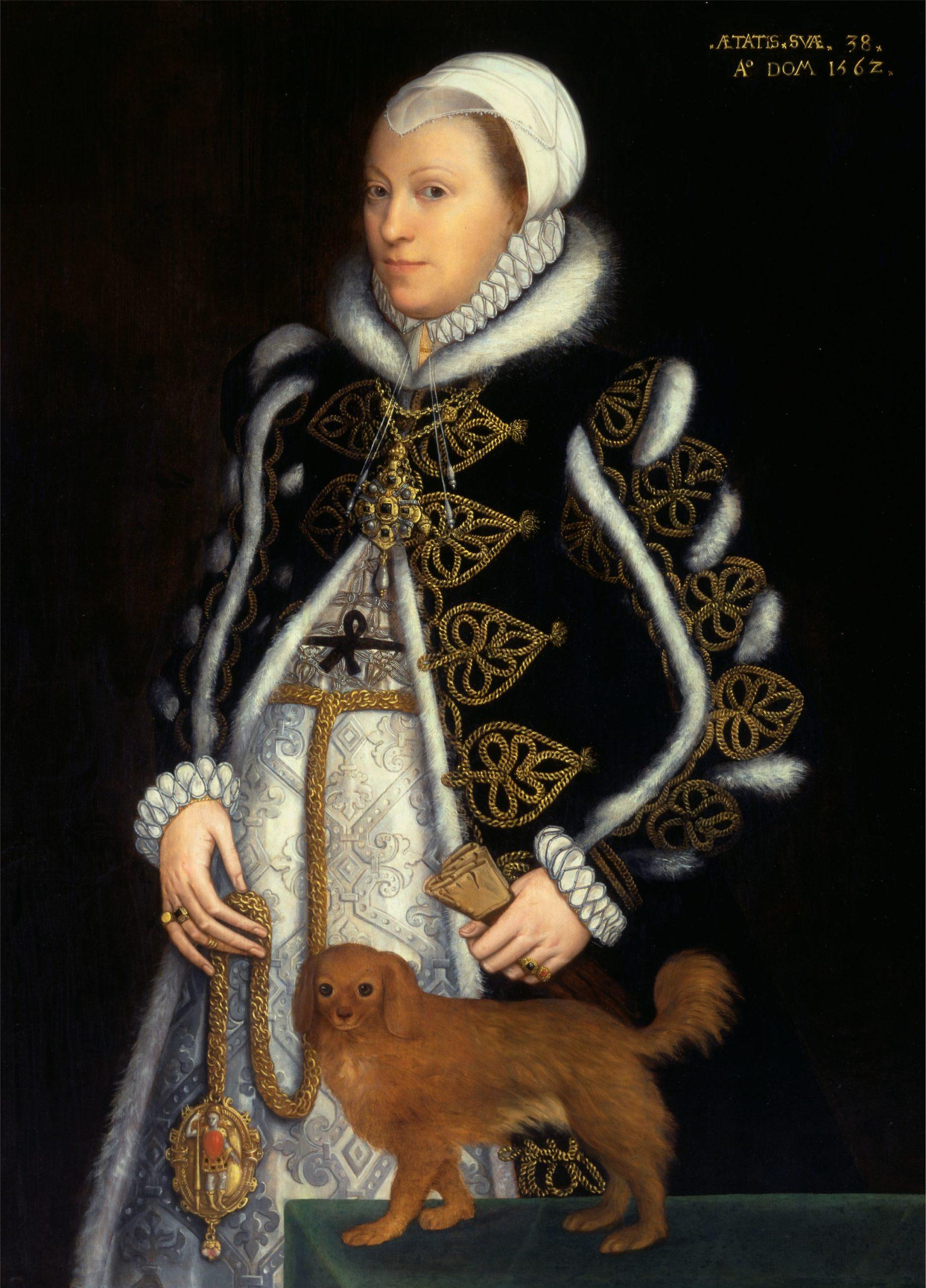 Lady Katherine Knollys by Steven van der Meulen